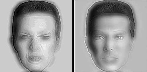 illusionfaces.jpg